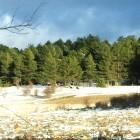 nieve-peralejos-de-las-truchas1
