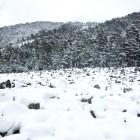 nieve-peralejos-de-las-truchas2