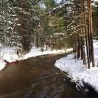 nieve-peralejos-de-las-truchas6