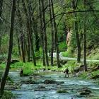 Pescadores en el río Gallo
