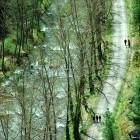 Río Gallo desde el mirador de Corduente