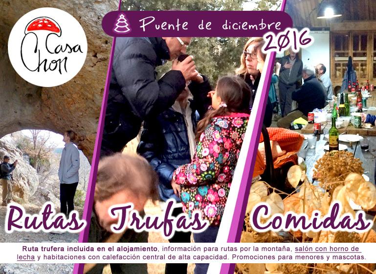 ofertas-puente-de-la-constitucion-diciembre-2016