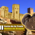 7ª Feria de la Trufa en Molina de Aragón