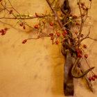 Peralejos de las Truchas. Casa Chon. Artesania
