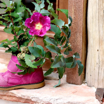 Casa Rural Alto Tajo Guadalajara. Zapato decorado
