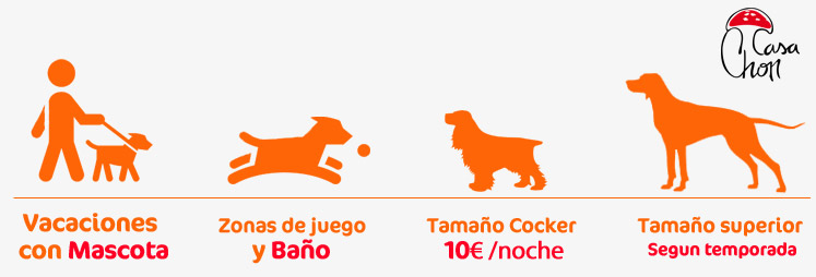vacaciones mascota-perro alojamientos rurales